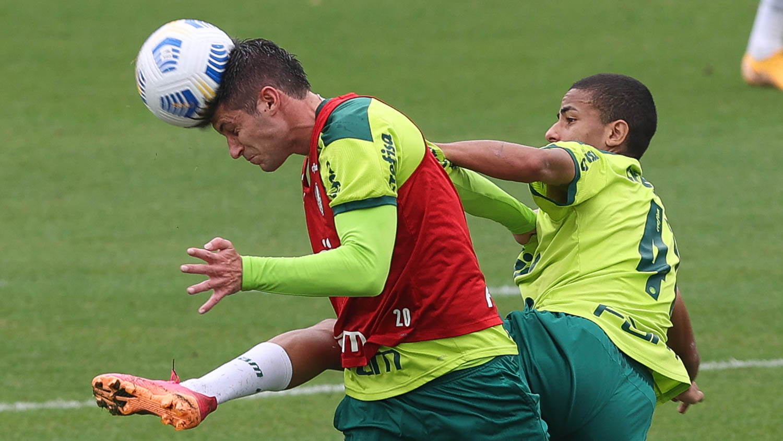 Palmeiras se reapresenta na Academia de Futebol com Menino, Kuscevic e coletivo