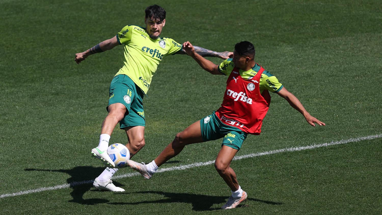 Classificado na Libertadores, Verdão inicia preparação para enfrentar o Cuiabá pelo Brasileiro
