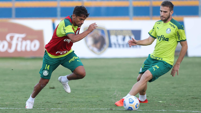 Palmeiras treina após derrota na Supercopa e inicia preparação para o jogo decisivo da Recopa
